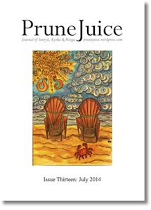 PJ Issue 13 Summer 2014 Cover